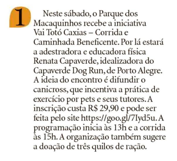 2017 Jornal Pioneiro 2