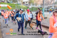 treino_carlosoliveira_IMG_8329_7806 copy