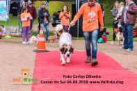 treino_carlosoliveira_IMG_8637_7806 copy